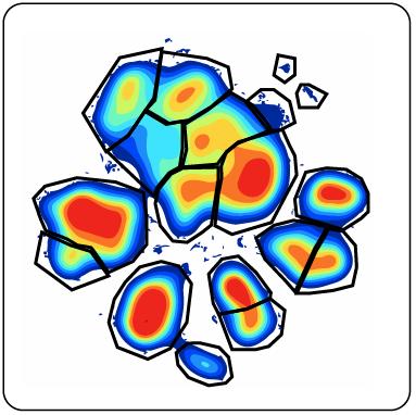 Analysis And Interpretation Of Visne Results Cytobank